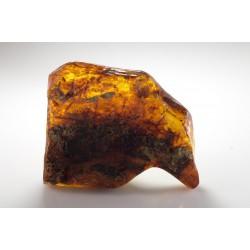 Φυσική Πέτρα Κεχριμπάρι